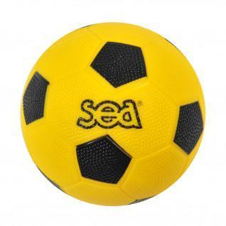 Iniciación al balonmano Sporti France Sea
